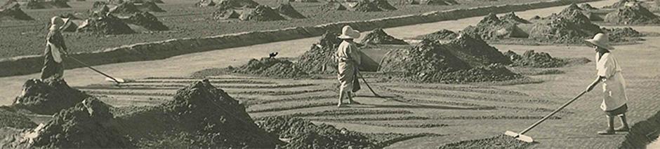 Major salt concentrate production methods