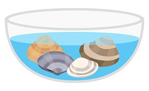 貝の砂出しは海水と同じ程度の濃さの塩水で