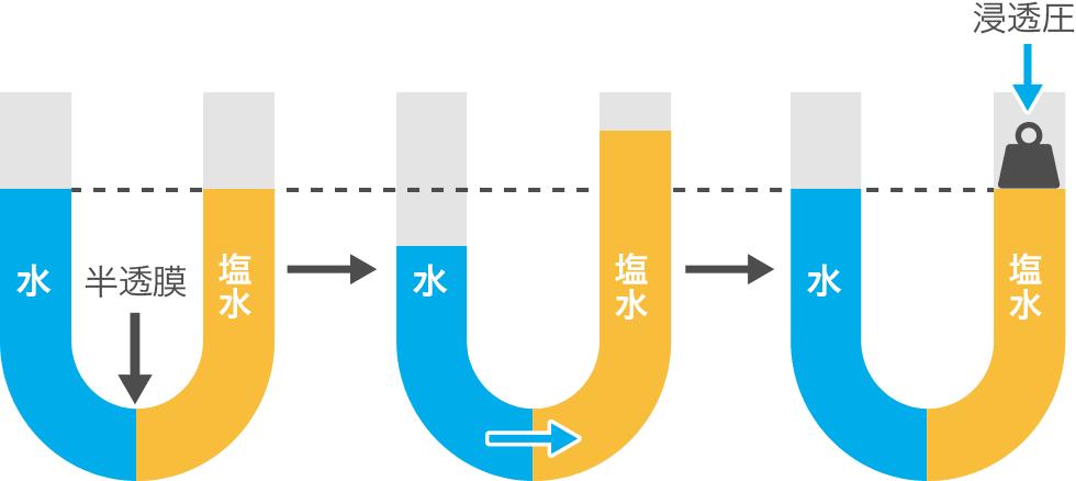 http://www.shiojigyo.com/siohyakka/img/about/data/28.png